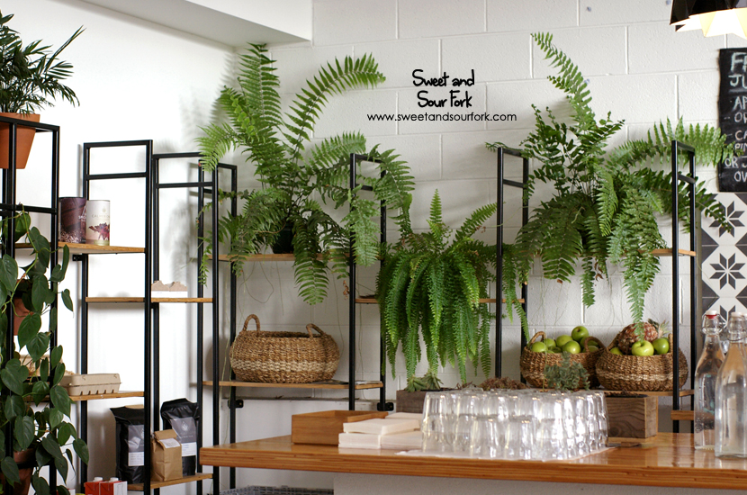 (4) Plants