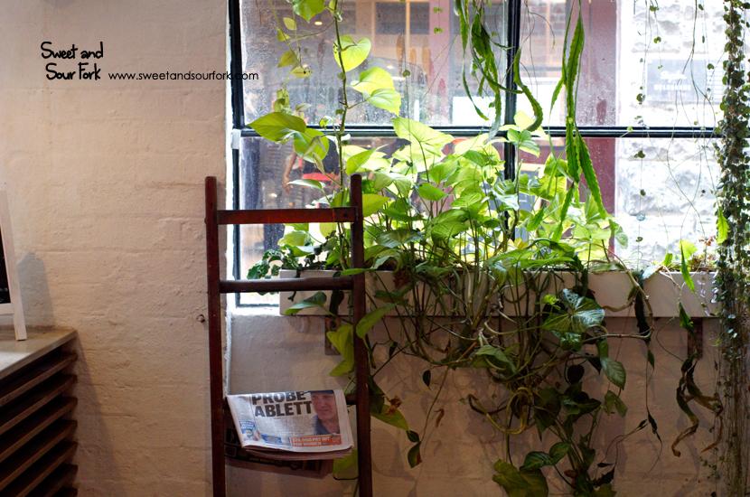 (3) Plants